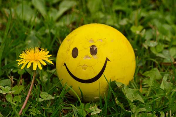 yellow smiley face ball next to a dandelion